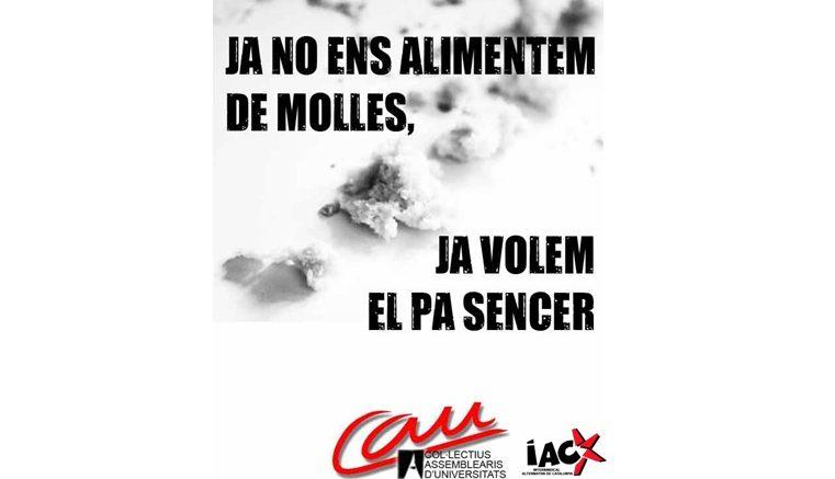 Cartell electoral dels CAU-IAC